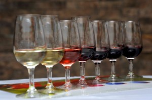 Sauvignon Blanc, Carmènere, Cabernet Sauvignon, Chardonnay, Pinot Noir Rose, Pinot Noir e Syrah