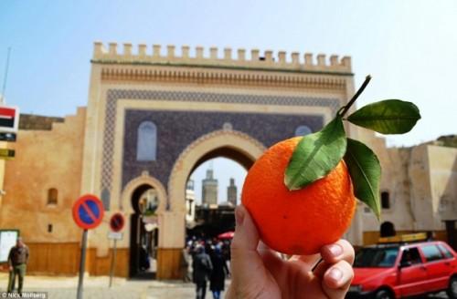 Laranja, Marrocos