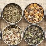 Plantas medicinais: saiba como usufruir e alcance seus benefícios