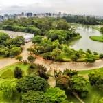 Parque Ibirapuera está entre os lugares mais mencionados no Facebook em 2015