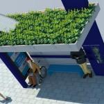 SC: Florianópolis ganha ponto de ônibus ecossustentável