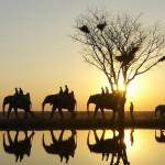 Conheça quatro hotéis africanos de tirar o fôlego