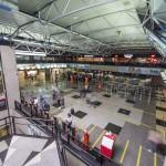 Aeroporto de Curitiba promove exposição sobre a biodiversidade do Paraná