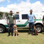 Aeroportos de Guarulhos e Galeão vão reforçar fiscalização com cães farejadores